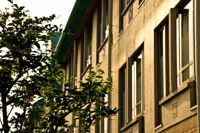 理系の大学院ってどんなところ?学費や就職活動、普段の生活を解説